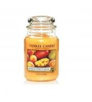 Yankee Candle, Mango Peach Salsa Duży Słoik, 623g