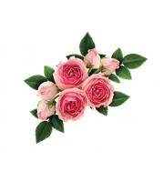 Lynia, Hydrolat z 100% kwiatów bułgarskiej róży damasceńskiej, 100 g