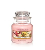 Yankee Candle, FRESH CUT ROSES, słoik mały, 104 g