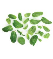 Lynia, Hydrolat z melisy organic, 100 g