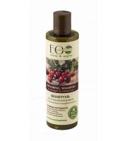 ECOLAB, Szampon regenerujący – dla zniszczonych i farbowanych włosów, 250 ml