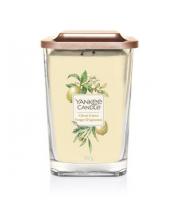 Yankee Candle, Elevation, Kwadrat duży, Citrus Grove, 552 g