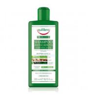 Equilibra, Wzmacniający szampon przeciw wypadaniu włosów, 300ml