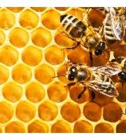 Zrób sobie krem, Mleczko pszczele, 15 ml